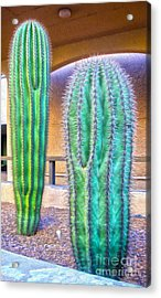 Tucson Arizona Cactus Acrylic Print by Gregory Dyer