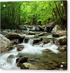 Usa, Tennessee, Great Smoky Mountains Acrylic Print by Ann Collins