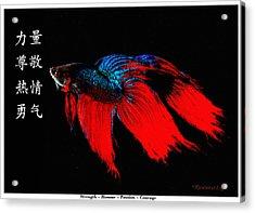 4 Virtues Siamese Fighting Fish #2 Acrylic Print