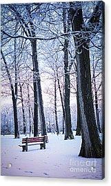 Winter Park Acrylic Print by Elena Elisseeva
