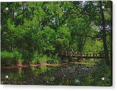 40 Mile Creek  Acrylic Print by Dan  Copeland
