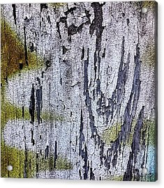 Wooden Wall 2 Acrylic Print