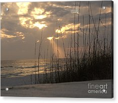 Alone In Heaven Again Acrylic Print by Craig Calabrese