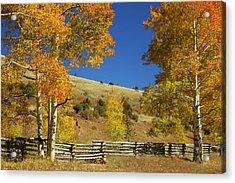 Autumn Cedar Mountain Utah Acrylic Print