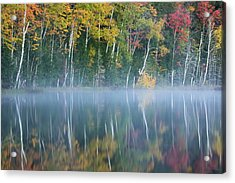 Autumn Colors And Mist Reflecting Acrylic Print