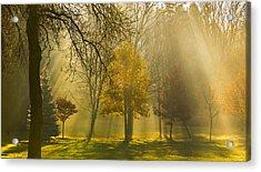 Beaming Morning Acrylic Print