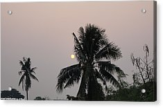 Beautiful Evening Acrylic Print by Gornganogphatchara Kalapun