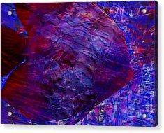 Beneath The Waves Series Acrylic Print by Jack Zulli