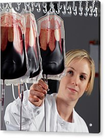 Blood Processing Acrylic Print by Tek Image