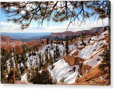 Bryce Canyon Acrylic Print by Marti Green