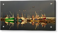 Dingle Harbor Acrylic Print