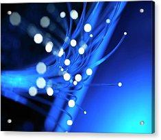 Fibre Optics Acrylic Print by Tek Image