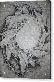 Fish Acrylic Print by Moshfegh Rakhsha