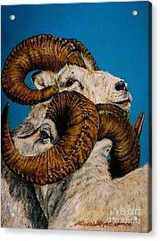 Horns Acrylic Print by Linda Simon