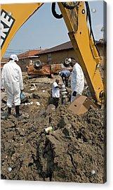 Repairing Hurricane Katrina Damage Acrylic Print by Jim West