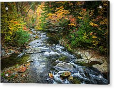Stream Great Smoky Mountains Painted Acrylic Print