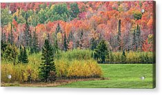 Usa, Michigan, Upper Peninsula Acrylic Print