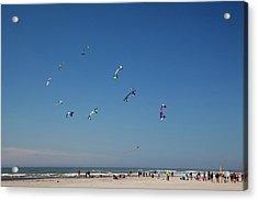 Wa, Long Beach, International Kite Acrylic Print by Jamie and Judy Wild