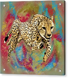 Wild Animal Stylised Pop Art Drawing Potrait Poser Acrylic Print by Kim Wang