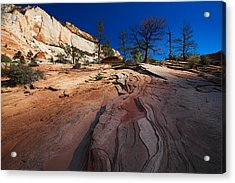 Acrylic Print featuring the photograph Zion National Park Utah Usa by Richard Wiggins