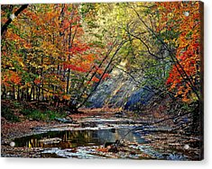 Autumn Stream Acrylic Print by Frozen in Time Fine Art Photography