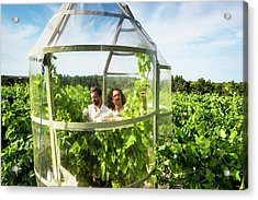 Effect Of Climate Change On Wine Acrylic Print by Philippe Psaila