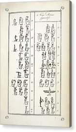 Hieroglyphics Research Acrylic Print by British Library