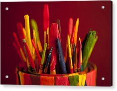 Multi Colored Paint Brushes Acrylic Print