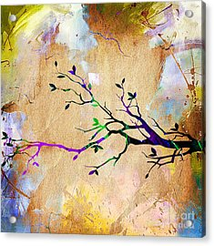 Tree Branch Collection Acrylic Print by Marvin Blaine
