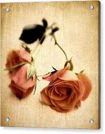Vintage Rose Acrylic Print by Jessica Jenney