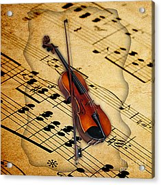 Violin Collection Acrylic Print