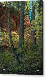 West Fork Fall Color Acrylic Print