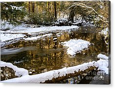 Winter Along Cranberry River Acrylic Print by Thomas R Fletcher