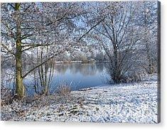 Winter Acrylic Print by Svetlana Sewell