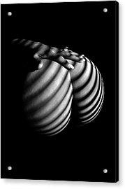 6747 Zebra Woman Nude Stripe Series   Acrylic Print