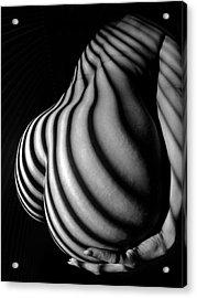 6777 Black White Nude Womans Curves Striped With Sunlight  Acrylic Print
