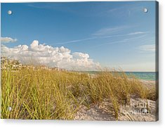 Clearwater Beach  Acrylic Print by Amel Dizdarevic