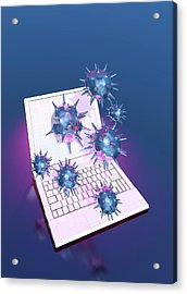 Computer Virus Acrylic Print by Victor Habbick Visions/science Photo Library