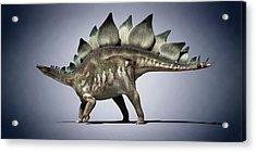 Dinosaur Acrylic Print by Sciepro
