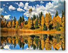 Fall Refelctions Acrylic Print