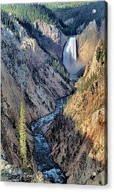 Lower Yellowstone Falls Acrylic Print by Stephen  Vecchiotti