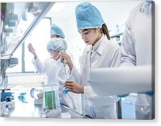Scientists Working In Lab Acrylic Print by Science Photo Library