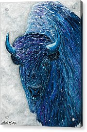 Buffalo  - Ready For Winter Acrylic Print