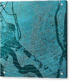Spider's Web Acrylic Print
