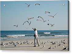 Acrylic Print featuring the photograph 79 Seagulls by Linda Brown