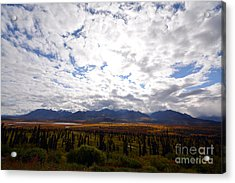 Acrylic Print featuring the photograph Alaska by Kate Avery