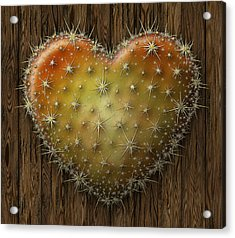 Cactus Heart Acrylic Print by James Larkin