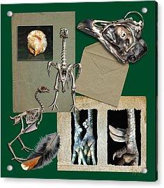 8. Chook Parts Acrylic Print