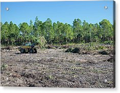 Everglades Restoration Acrylic Print
