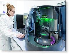 Haematology Laboratory Acrylic Print